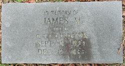 James M. Dridggers