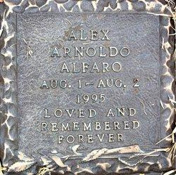 Alex Arnoldo Alfaro