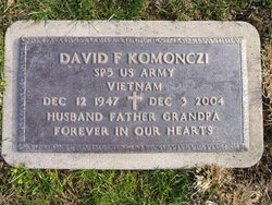 David F Komonczi