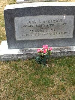 John A Anderson