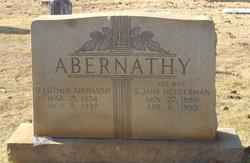 Daniel Luther Abernathy