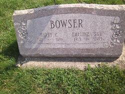 Sue Bowser nude 47