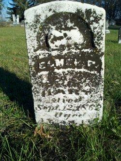 Elmer P. Hart