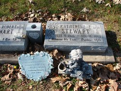 Katherine E Stewart