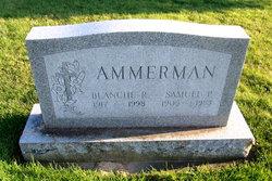 Samuel P. Ammerman