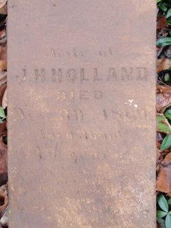 """Mary """"Polly"""" <I>Myatt</I> Holland"""