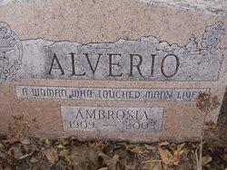 Ambrosia Candida Alverio