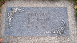 Viola Olivia <I>Hanson</I> Williams