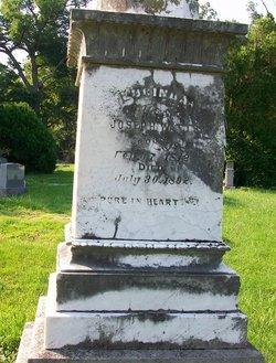 Lucinda <I>Haynes</I> Watts