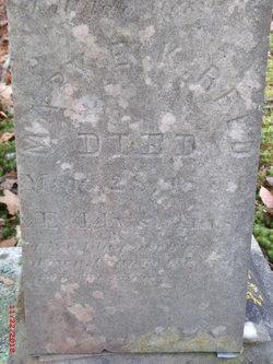 Mary E K Reed