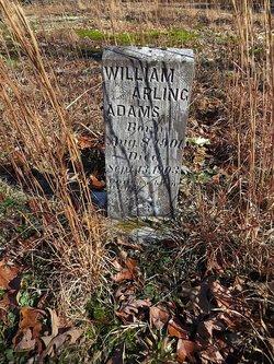 William Arling Adams