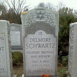 Image result for delmore schwartz