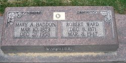 Mary Ann <I>Haddon</I> Ward