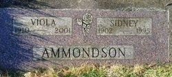 Viola <I>Reinstra</I> Ammondson