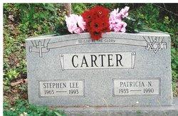 Stephen Lee Carter