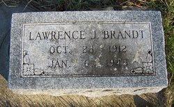 Lawrence J Brandt