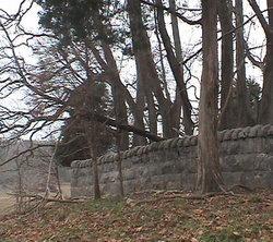 Malone Cemetery