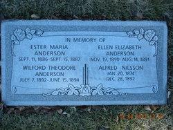 Ellen Elizabeth Anderson