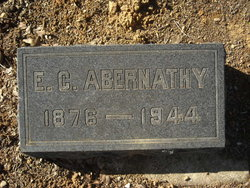 Edwin Carlin Abernathy