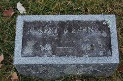 Albert B Barnes