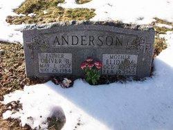 Mabel Elida <I>Olson</I> Anderson