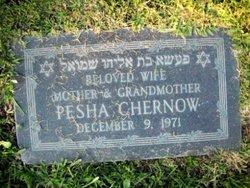 Pesha Chernow
