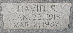 David S Williams