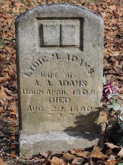 Lydie M. <I>Brown</I> Adams