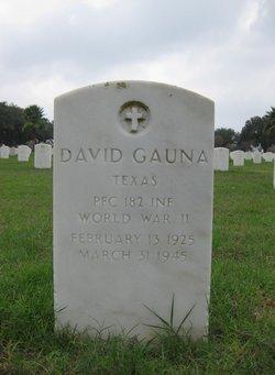 David Gauna