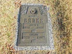 James H. Banks