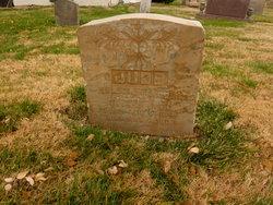 Helen Francis <I>Joyce</I> Judd