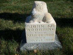 John A Woodring