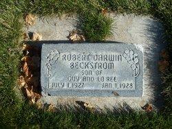 Robert Darwin Beckstrom