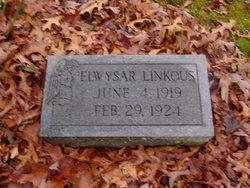 Elwysar Linkous
