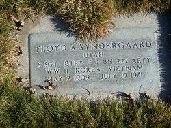 Floyd Andreas Syndergaard