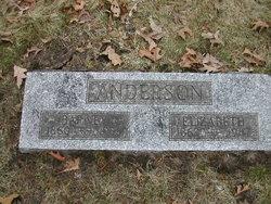 Elizabeth Mary <I>Fowle</I> Anderson