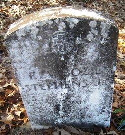 Rev Bozie Stephens, Jr