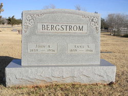 Anna S Bergstrom
