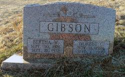 Norbert C Gibson