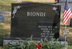 Peter J Biondi