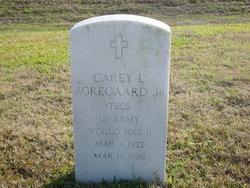 Carey L Agregaard, Jr