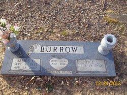 James O. Burrow