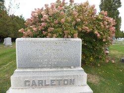 Andrew Ziba Carleton