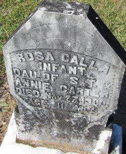 Rosa Calla Carter