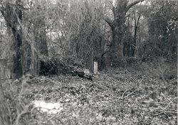 Jeremiah Adams Cemetery