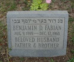 Benjamin D Fabian