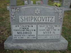Myer N Shipkovitz