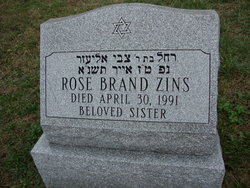 Rose <I>Brand</I> Zins
