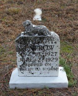 Eva Gray Renfrow