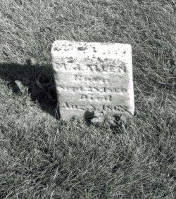 M. J. Allen